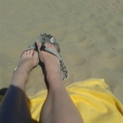 5xstedenaanzee strand