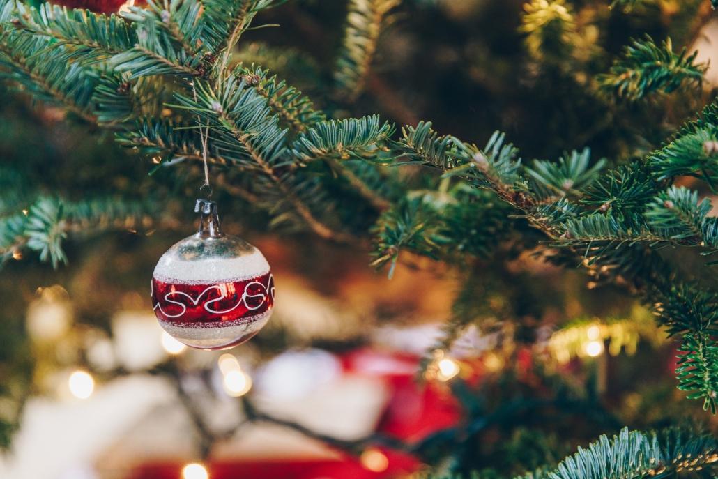 christmas tree local