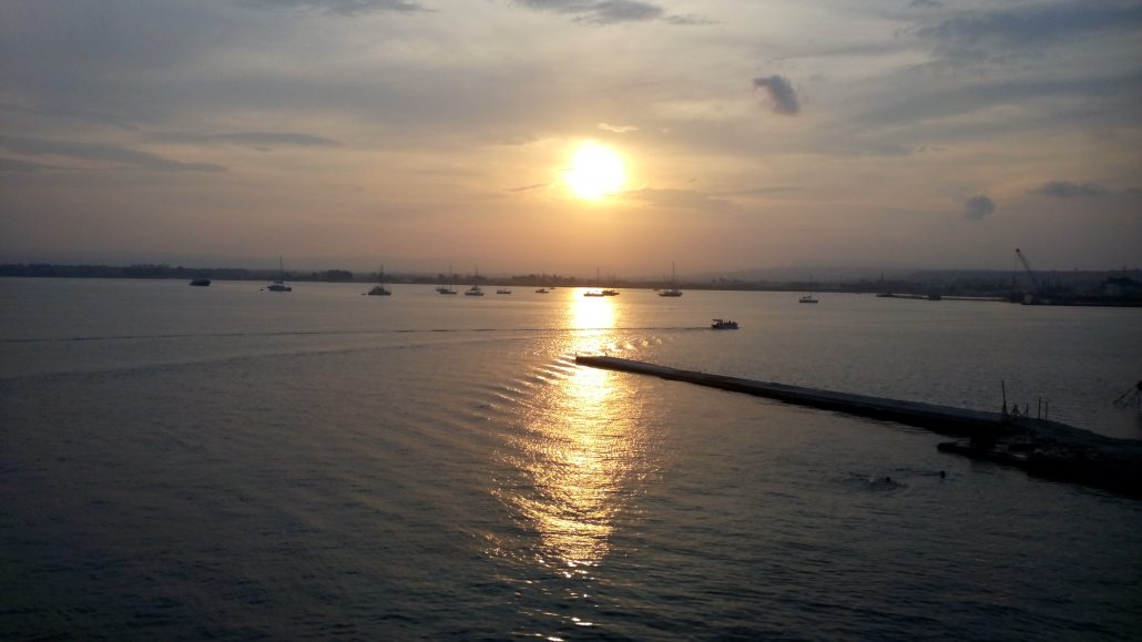 Ortigia zee