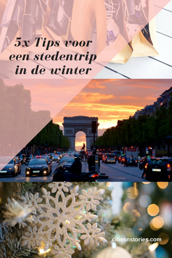 tips stedentrip winter