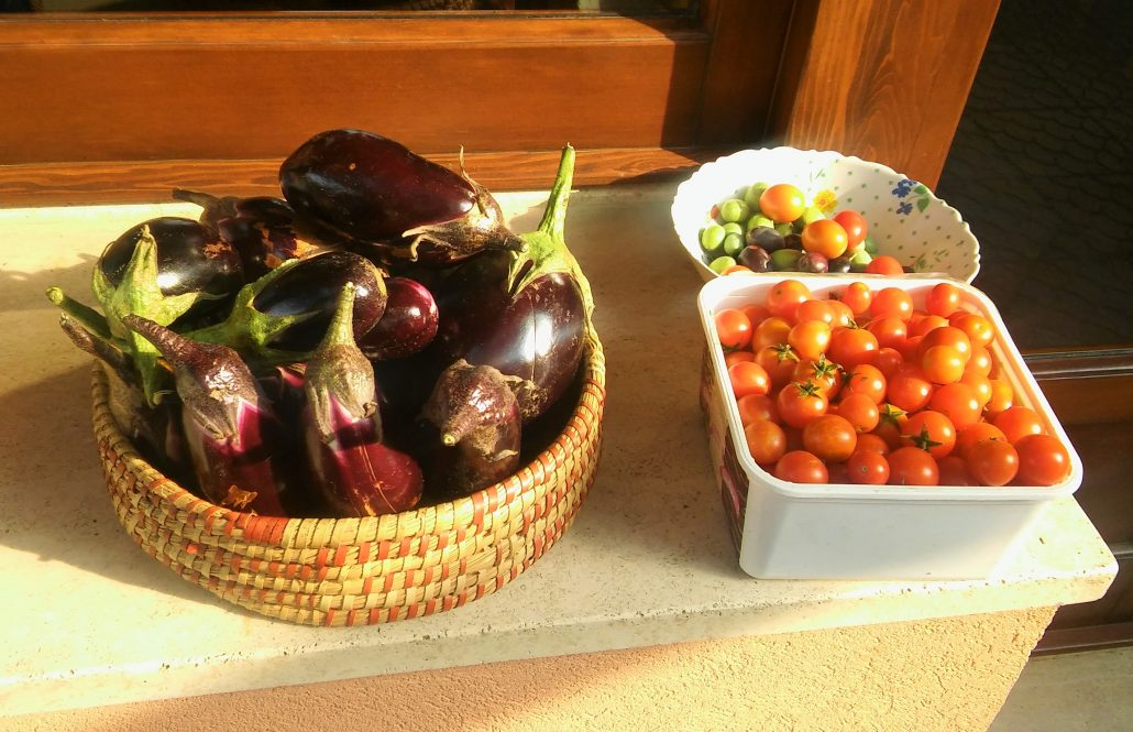 groenten tuin