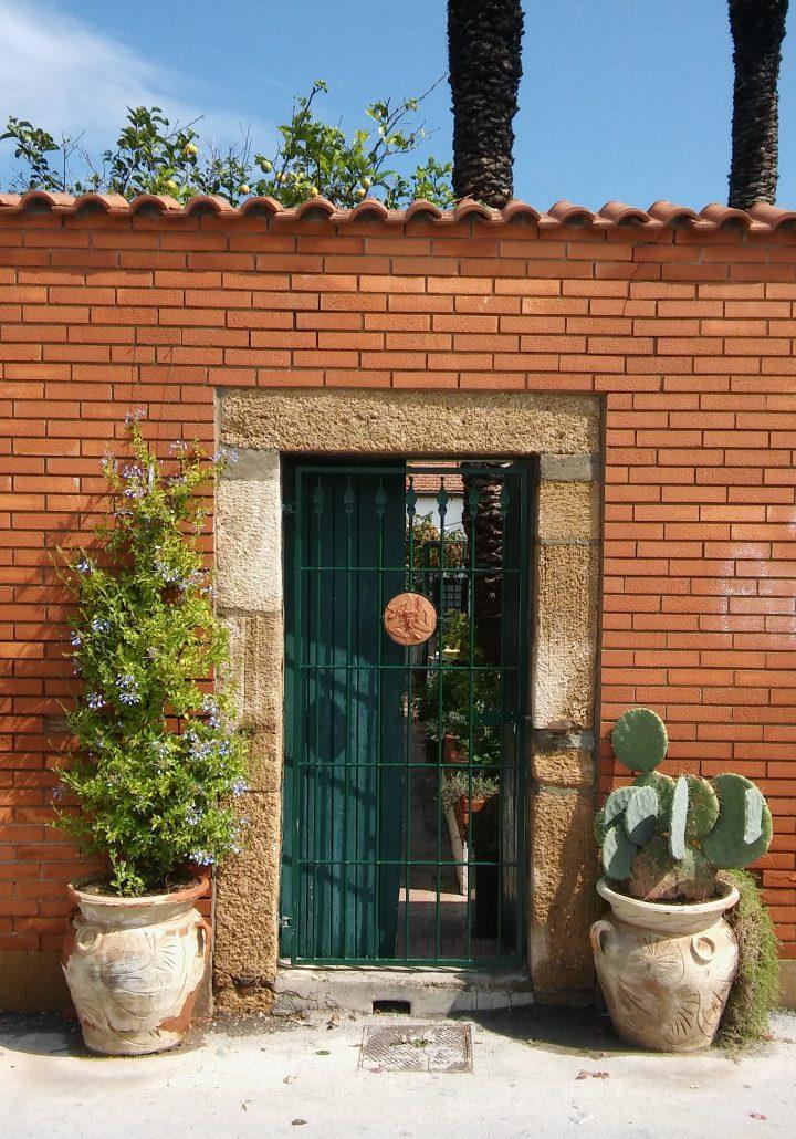 cactus sicilië