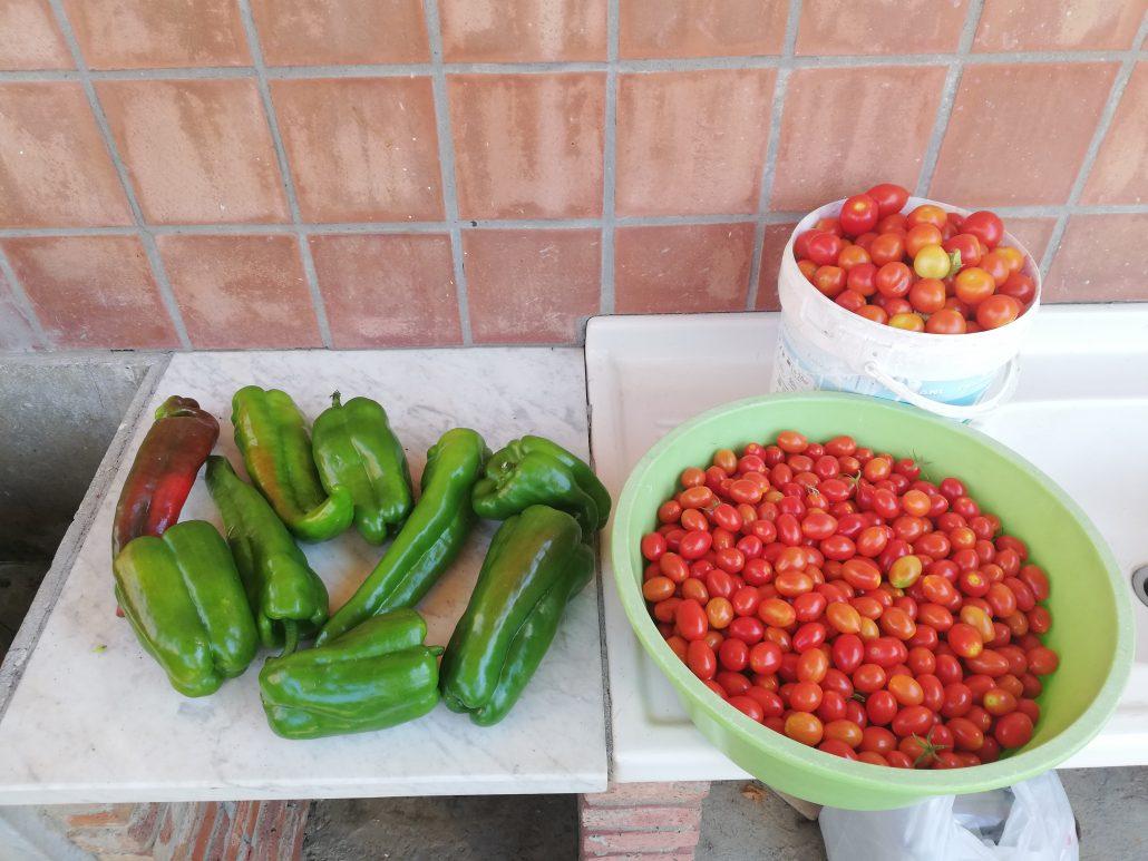 groenten Sicilie