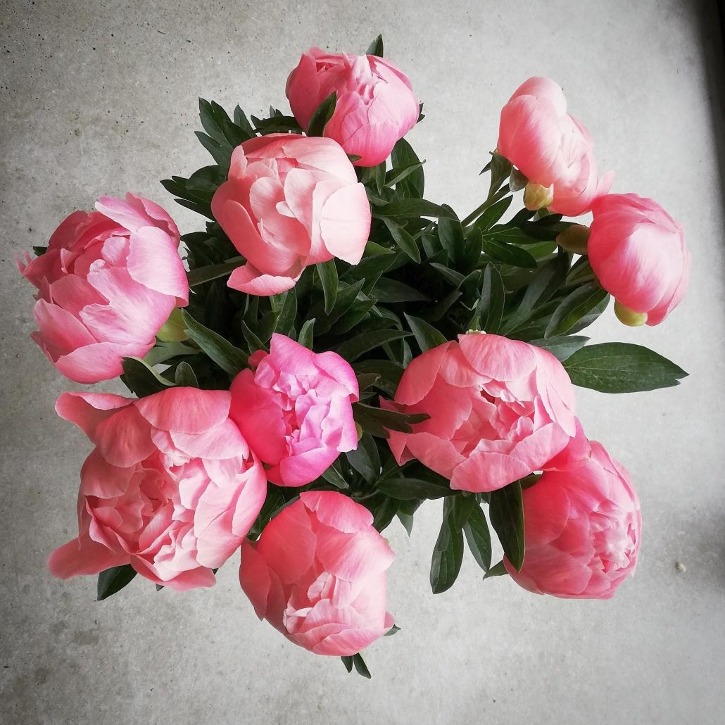 amsterdam boeket bloemen