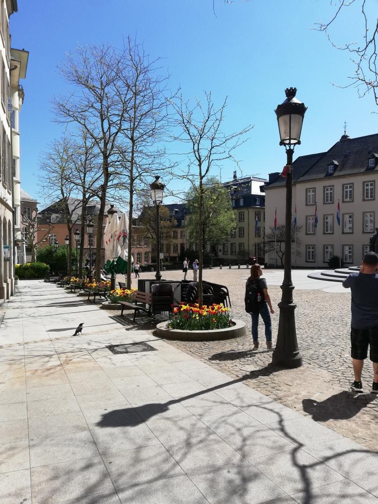 tulpen Luxemburg