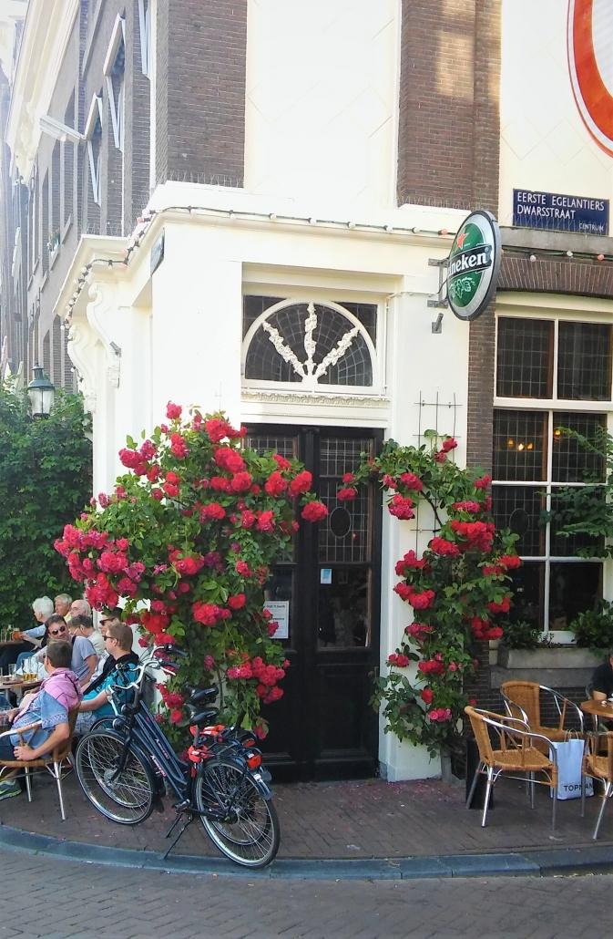roses JordaAn Amsterdam